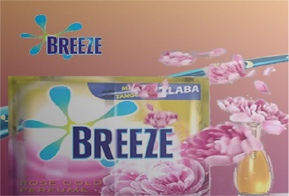 breeze case study